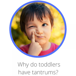 Why do toddlers have tantrums? Contents page. Boy poking face and thinking